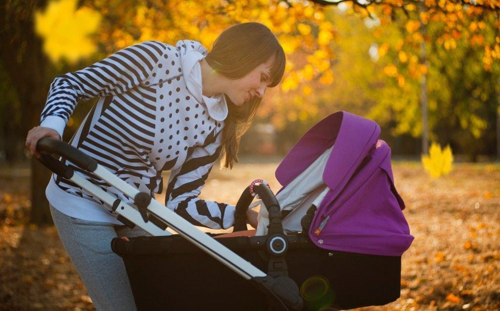 Baby Carrier or Stroller